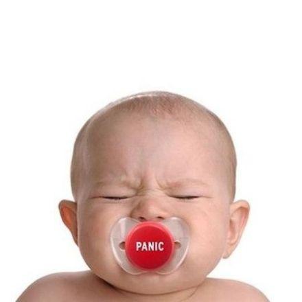 Obrazek Smoczek Panic