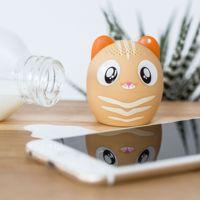 głosnik kot prezent dla dziewczyny warsawa