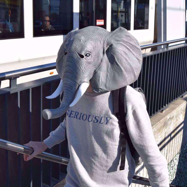 Maska Słonia przebrania sklep warszawa