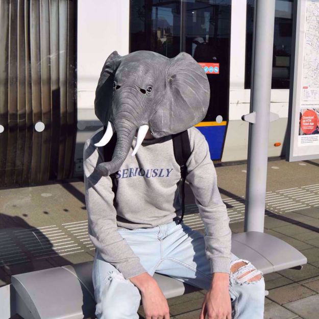 Maska Słonia gadżety imprezowe warszawa