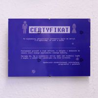 Certyfikat Kawalerski – Bluescreen Para prezent na kawalerski dla informatyka