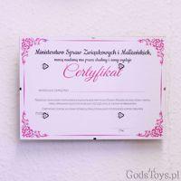 Certyfikat Panieński – Peniski śmieszne prezenty na panieński