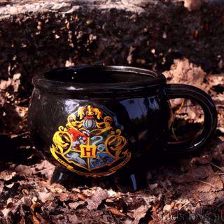 Harry Potter Kociołek Czarodzieja prezent dla dziewczyny