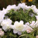Wianek dla Panny młodej biały tanie wianki na głowę warszawa