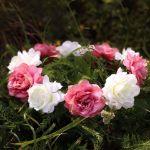 Wianek piwonia kremowe brudny róż akcesoria na wieczór panieński dekoracje