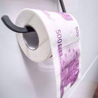 Papier toaletowy z euro śmieszne papiery do toalety