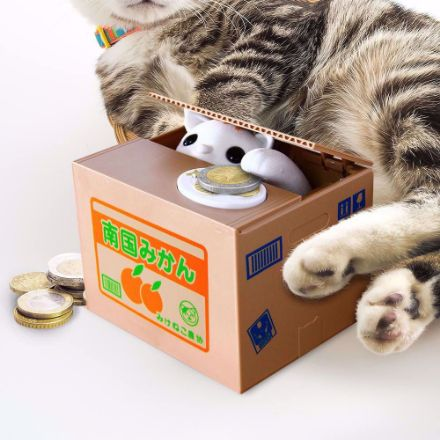 Skarbonka kot psotnik prezent na święta ciekawe skarbonki
