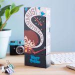 Harry Potter – Piórnik 3w1 harry potter pojemnik na długopisy